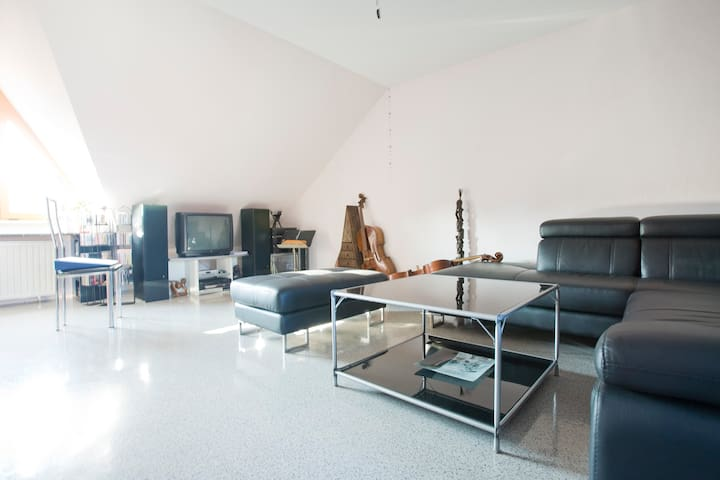 Comfortable and Spacious Loft - Worms - Huoneisto
