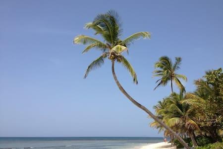A Piece of Paradise! - St. Croix