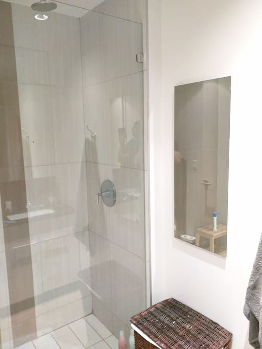 Amazing water pressure in the shower!