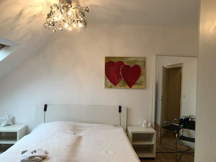 Große Mansarden-Wohnung zentral & ruhig in Mayen