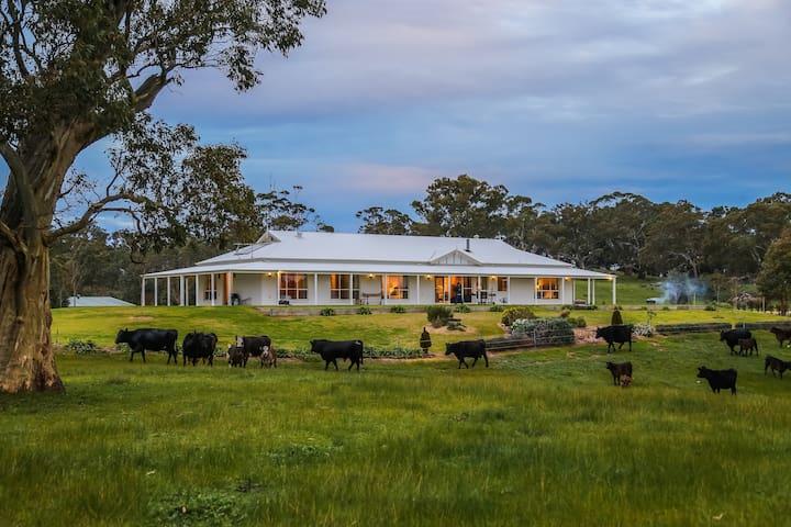Adelaide Hills - Jura House - Woodside - Woodside