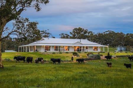 Adelaide Hills - Jura House - Woodside - Woodside - Dům