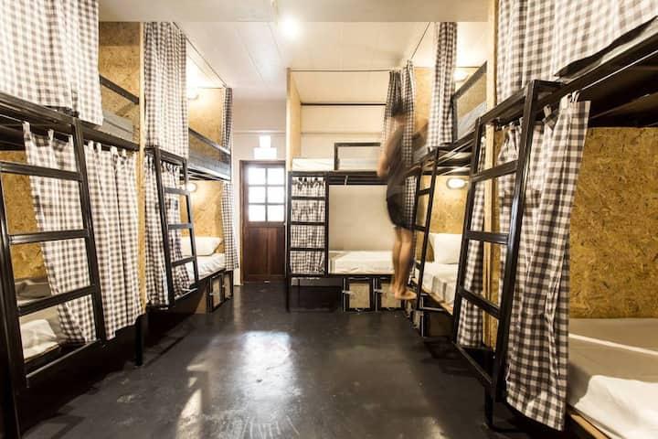 10 bunk beds mixed dorm 230 THB