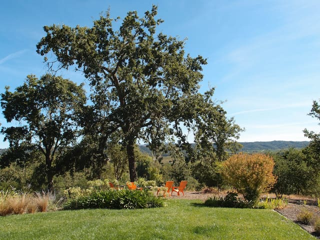 Private Family Friendly Retreat with Amazing View - Healdsburg - Casa