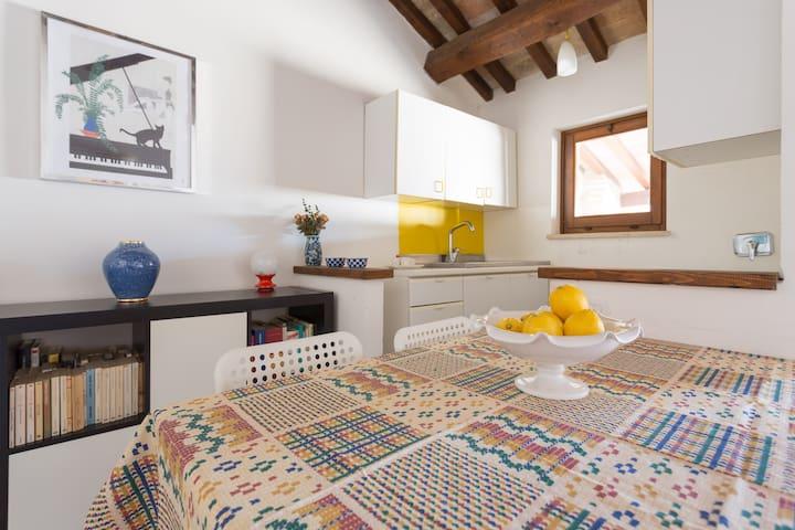 Appartamento bilocale con angolo cucina e servizi