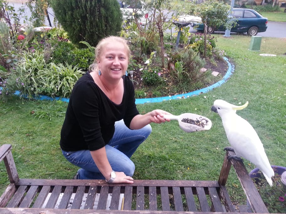 Me feeding a wild Cockatoo!