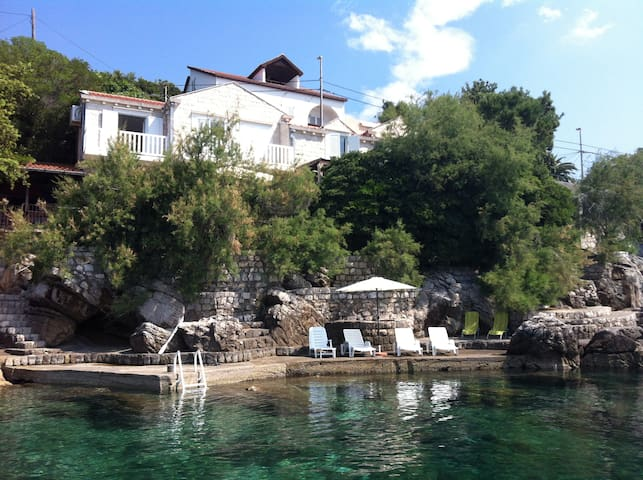 Beach house for rent Villa Petra - Dubrovnik - Villa