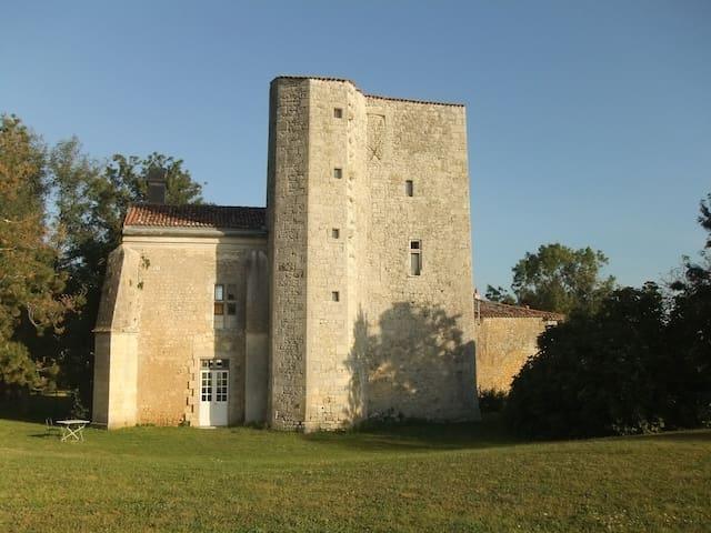 Chateau de Champdolent _ Logis - Champdolent - Castle