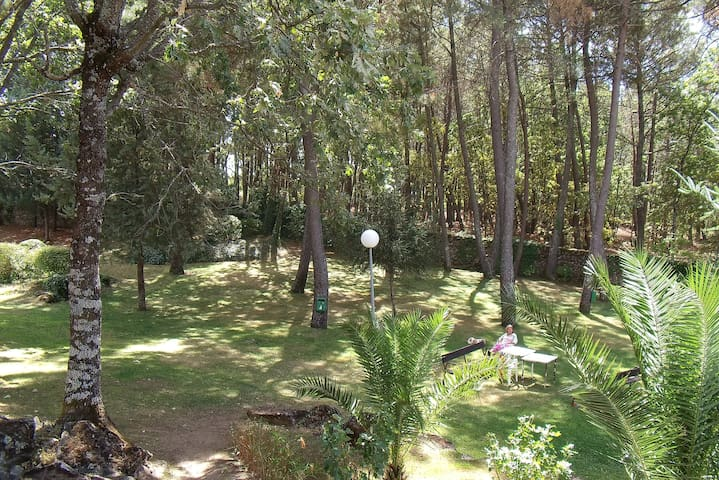 Entre pinos y áreas de juegos. - Arenas de San Pedro - Apartemen