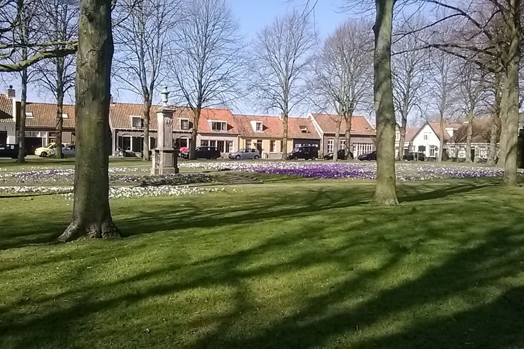 .... om te komen genieten (to come to enjoy) van het kleine pittoreske dorp (the little village), Nisse ......