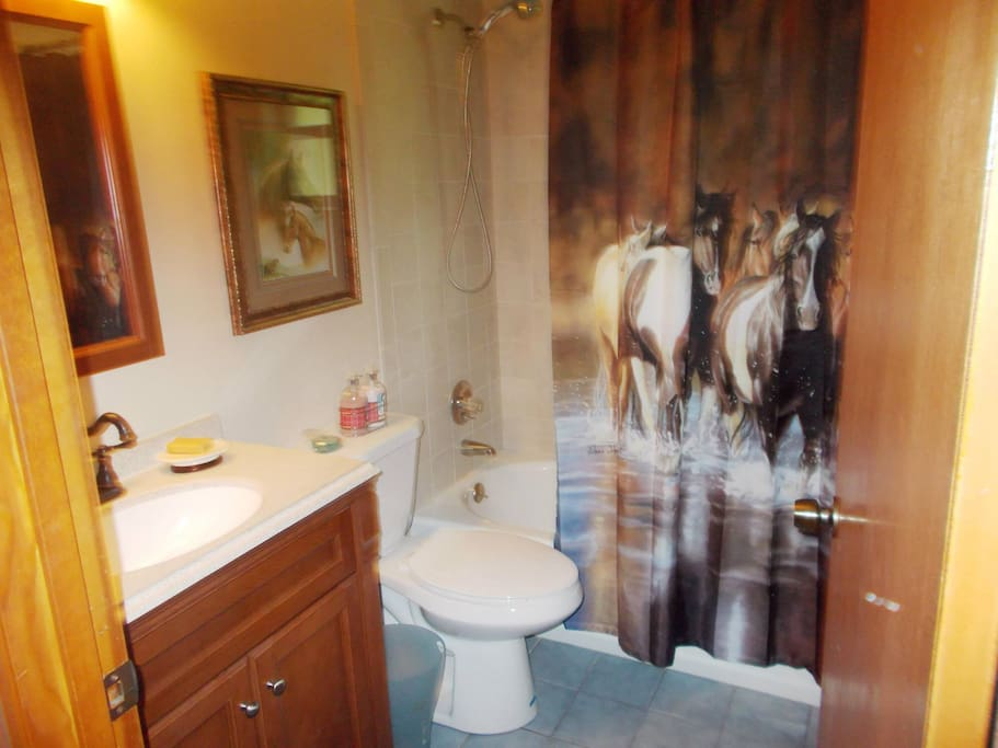 Bath shared with other guest room