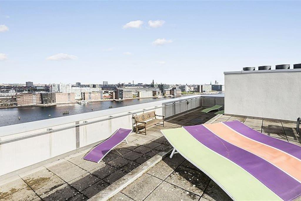 Amazing roof terrace