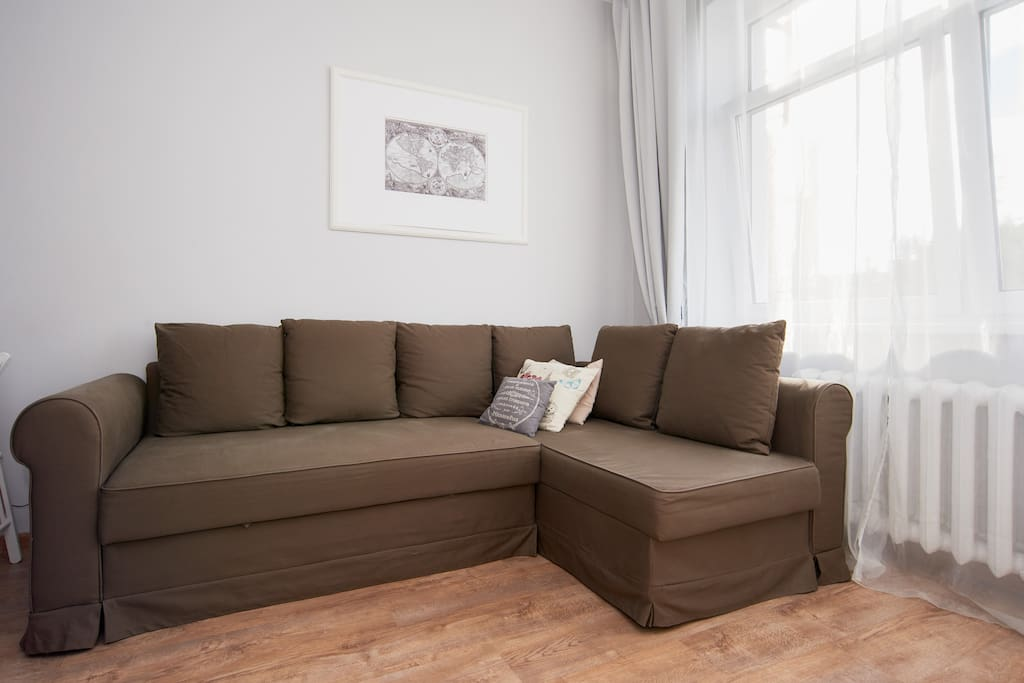 Foldout sofa, perfect for two. But 3 also fit (verified by our guests)