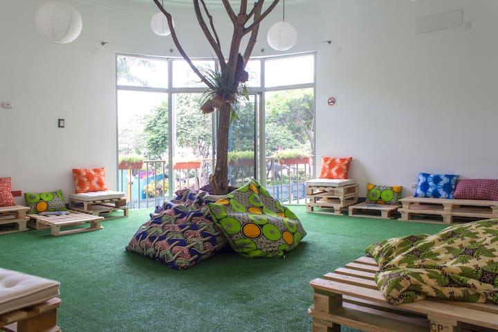 NAZU City Hostel - DORM - กัวยากิล