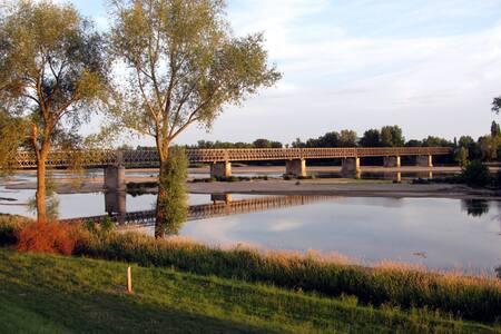 Vue sur la Loire et les vignes - Pouilly-sur-Loire