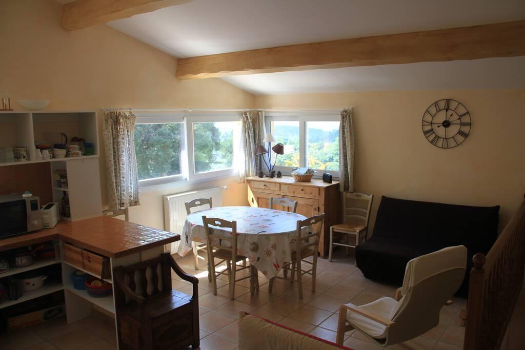 Cuisine et salle de séjour avec un canapé lit pour 2 personnes salon et tv.