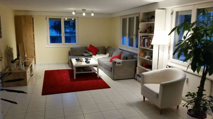 Nice room with a double bed - Heerbrugg - Wohnung
