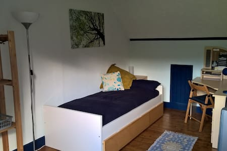 Room 2 - Large Single attic bedroom - Barry - House