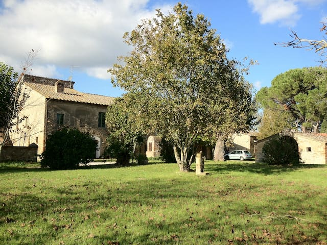 Enormous CountryHouse Monteriggioni - Siena - Apartment