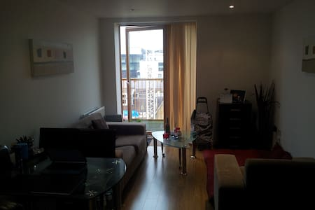 1 BHK fully furnished flat - London - Barking - Huoneisto