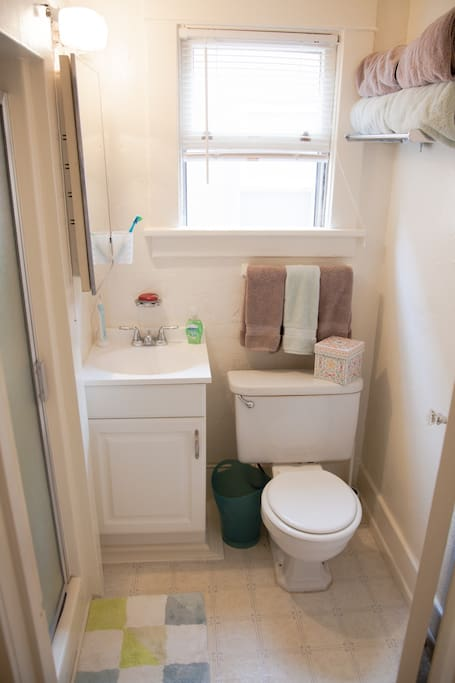 Private bathroom with toilet and shower.