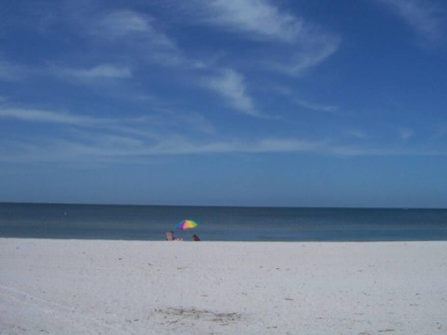 Treasure Island Florida Site Airbnb Com