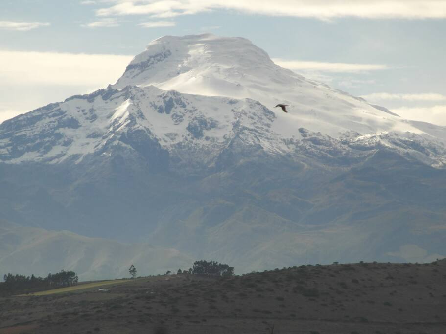 Cayambe, visible from the house (plus 11 more snow-capped mountains)