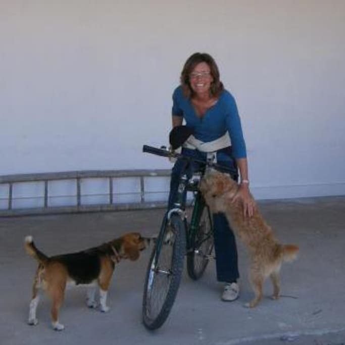 Off on a bicycle ride (if the dogs will let me).