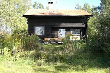 Cabin lodge 40 min from Stockholm - Ekerö V