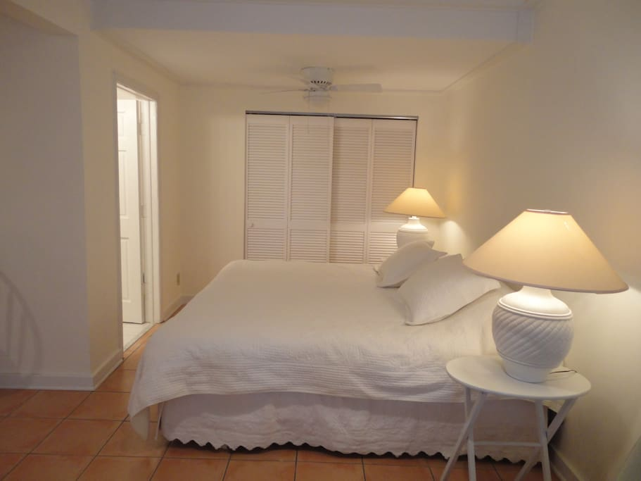 king size bed, large closet and bathroom door