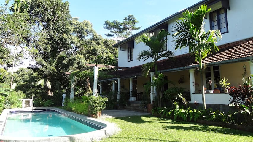 Tea Estate Accomodation - Strathisla - Whole house - Matale - Bed & Breakfast