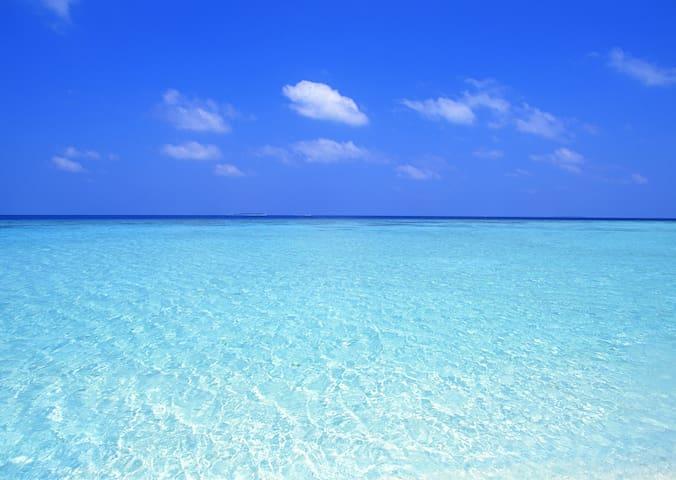Spectacular Beach Condo!!!