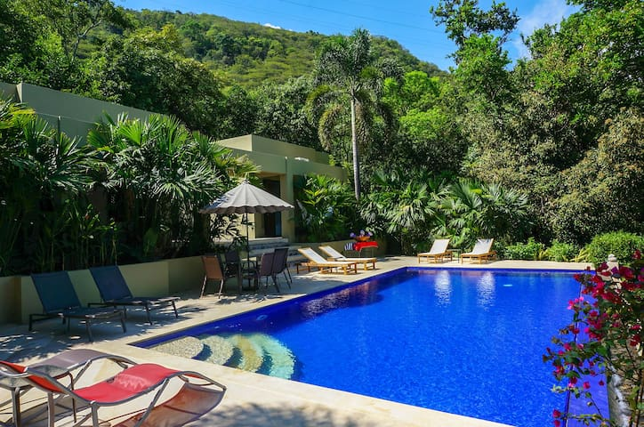 Tropical Exuberance & Modern Architecture in Apulo