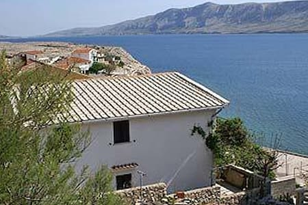 One bedroom apartment with terrace and sea view Zubovići, Pag (A-241-c) - Zubovići - Pis