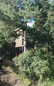 Tree hut! - Hvitsten - Baumhaus