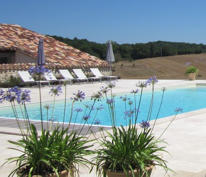 The salt water swimming pool