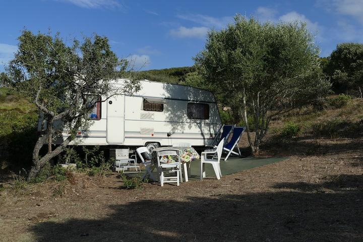 Caravan in campeggio idillico in mezzo alla natura