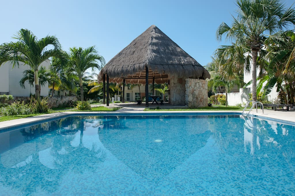 Pool and Palapa View