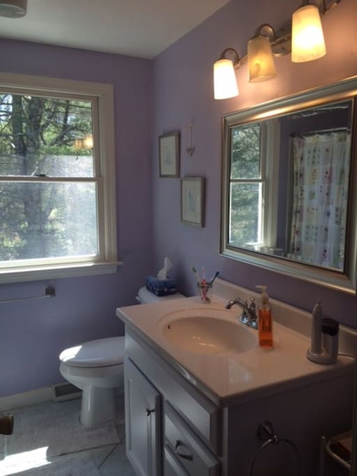 full Bathroom, redone as of 3/2016