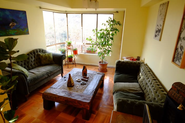 Forestal Park View Bed & Breakfast