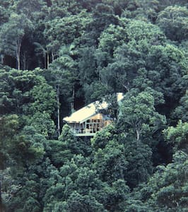 The Unique and Luxurious Forest House - Byron Hinterland