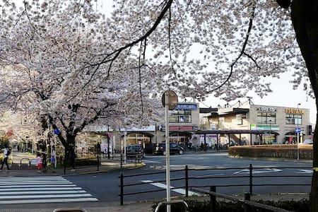 DOMUS MUSASHINO -Sakura View-
