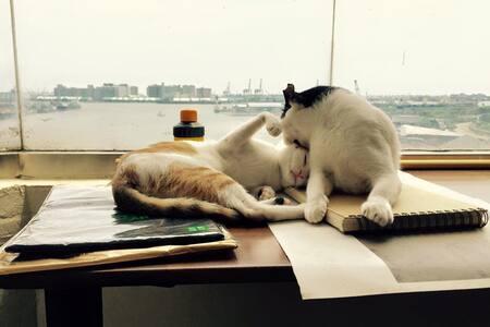 愛河旁海景貓寓B/ Riverside Suite with Cats - Lingya District - Lägenhet