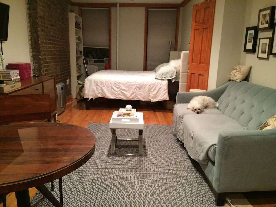Sofa, Queen sized bed, TV, bistro dining table (dog not included =)