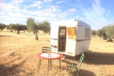 Vintage petit caravan in olive yard - Toledo