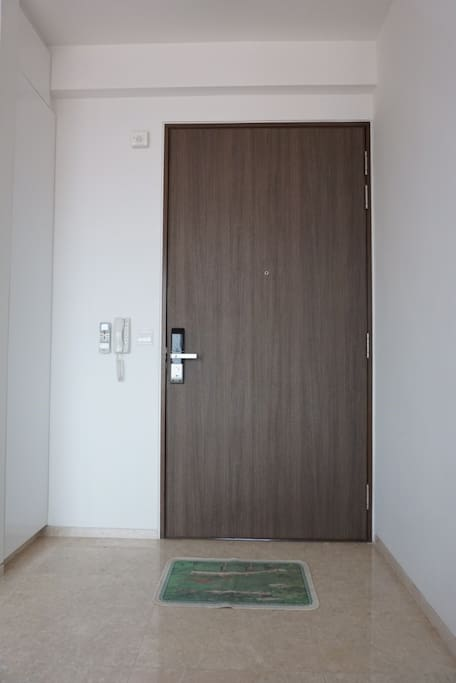 Main door of the Apartment