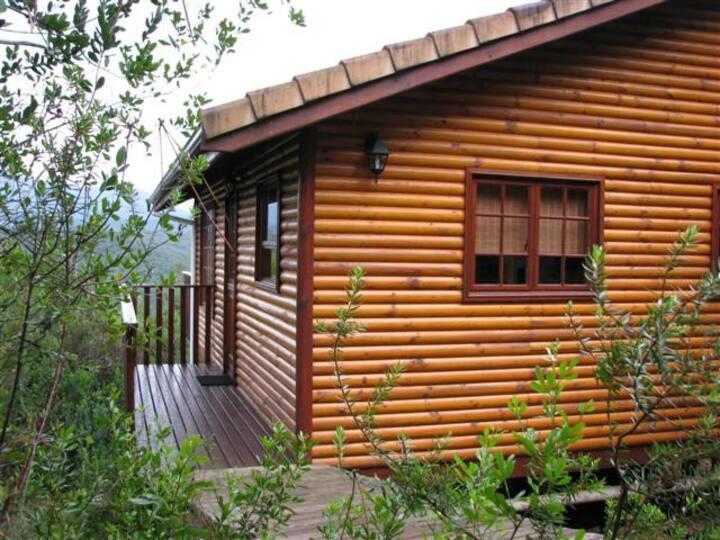 Wild Olive Forest Cottage
