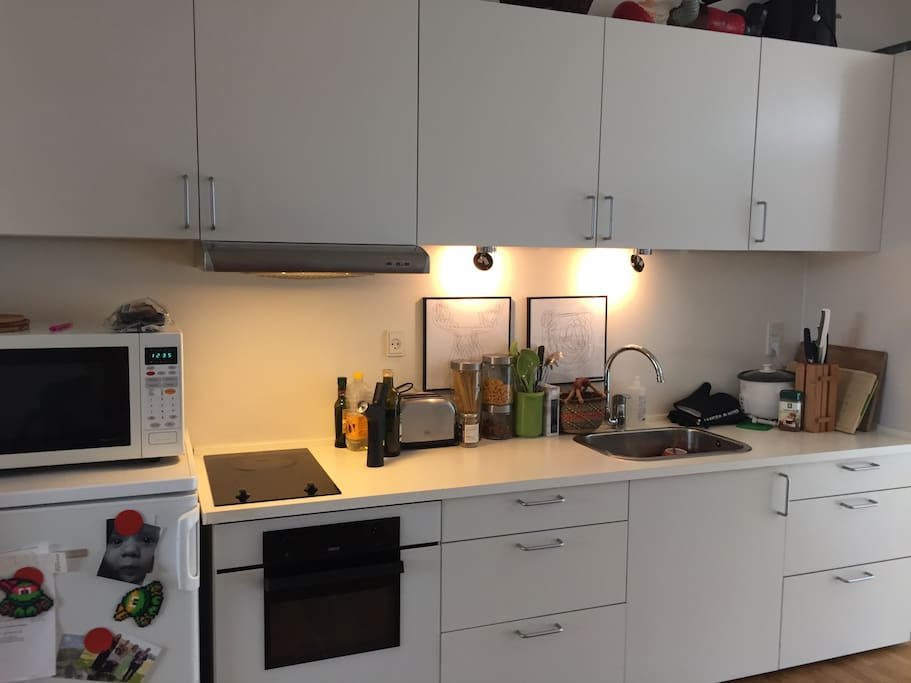 The kitchen is lower than normal, so wheelchair users can use it.