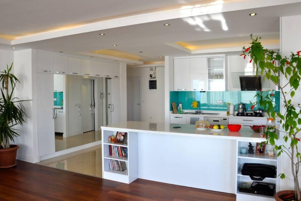 New luxury open kitchen