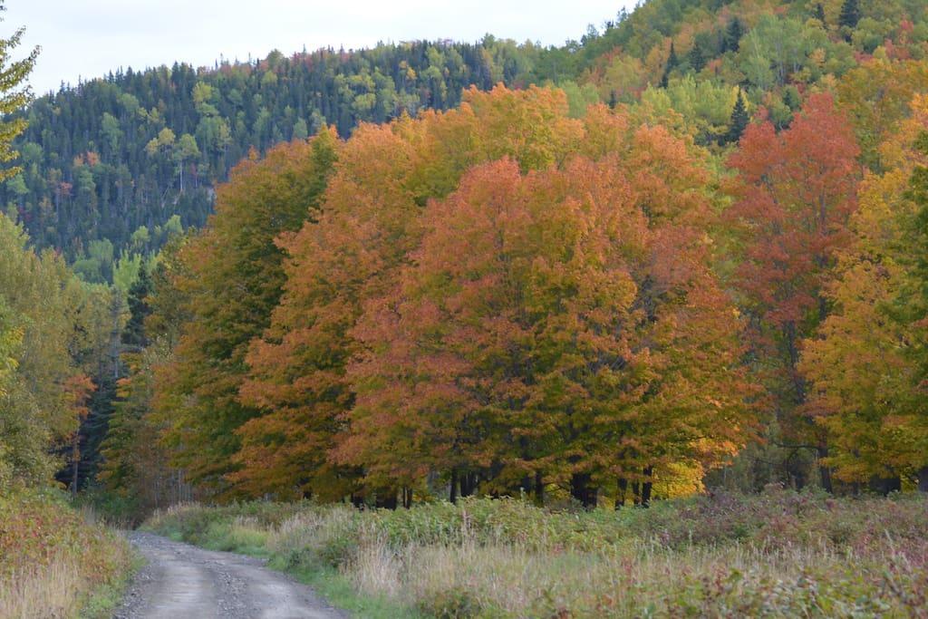 Pour une randonnée toute en couleurs!
